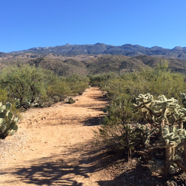 Sunday hike on Douglas Spring trail